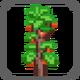 Nav-plants.png