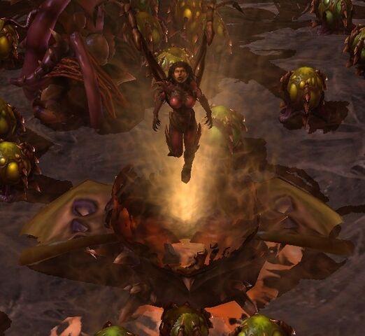 File:ChrysalisKerrigan SC2 Game2.jpg