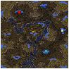 AQuestionOfHumility Sc1 map1