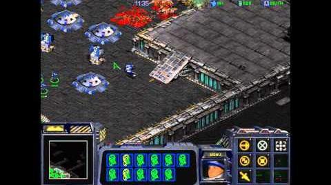 DesperateAlliance SC1 VGame1