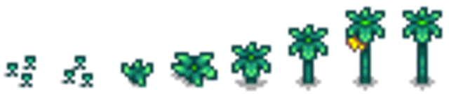 File:Starfruit growth.png