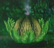 Bomb Spore Plant