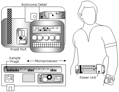 File:BodyComp.png