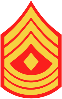 File:1stSgt.png