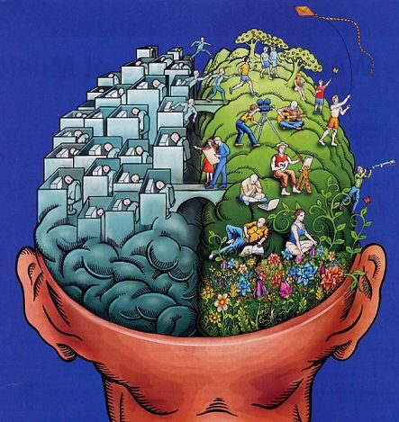 File:Right-brain-and-left-brain.jpg