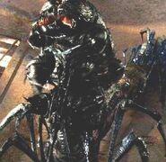 Arachnidcontrollercarrikk5
