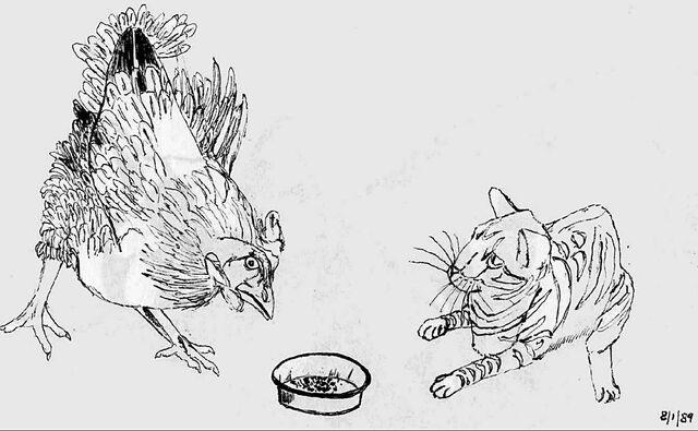 File:Cat vs chicken sketch by mmpratt99-d1wkuyy.jpg