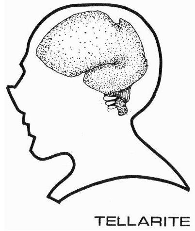 File:Tellarite brain diagram.jpg