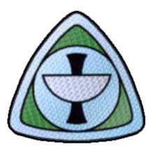 File:Epsilon9 med insignia.jpg