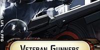 Veteran Gunners