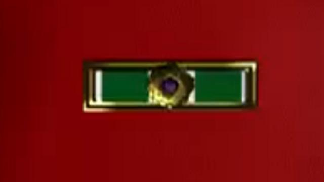 File:Group Commander Citation.png