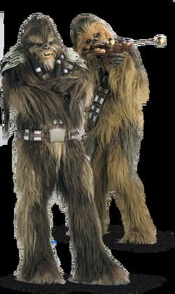 Tarfful and Chewie-SWE