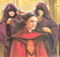 Amidala hair tending.png