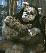 Maternal ewok