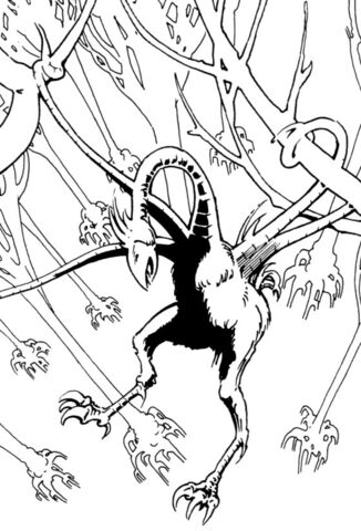 File:Tentacle bird of Pelemax.jpg