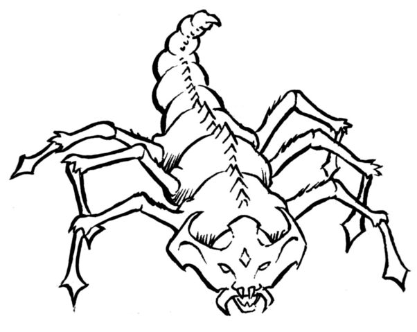 File:Kretch insect.jpg