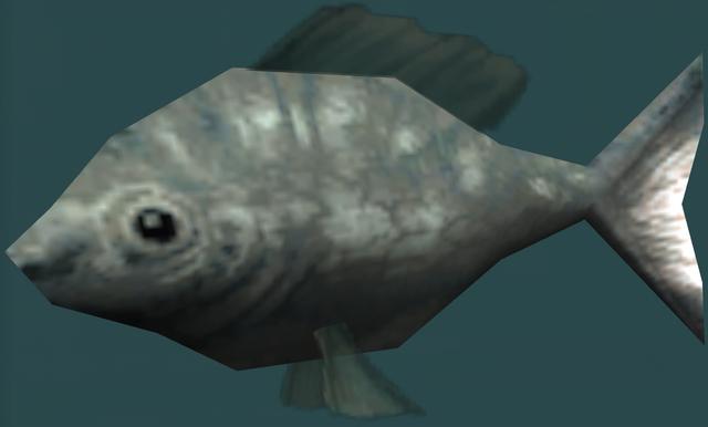 File:Bluefish.png