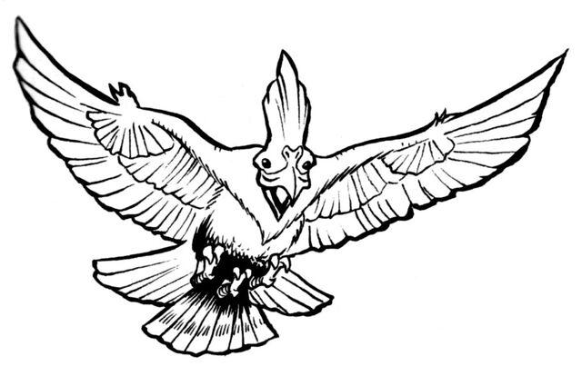 File:Manollium Bird.jpg
