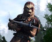 Wookiee swg