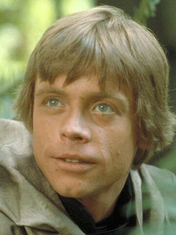 File:Luke on Endor.jpg