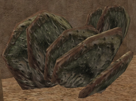 File:Paddle cacti-SWG.jpg