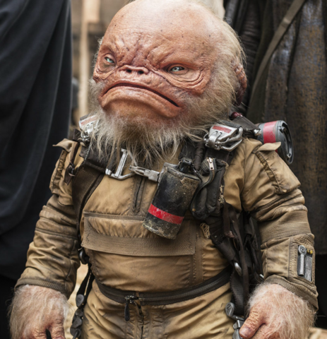 File:Weeteef Cyubee-EW Rogue One.png