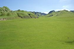 Great Grass Plains.jpg