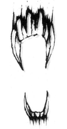 File:Night Fangs insignia.png
