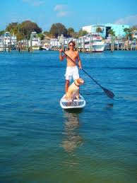 File:People paddleboarding.jpg