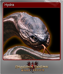 Dragon's Dogma Dark Arisen Foil 6