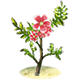 Fairy Bloom Freesia Badge 5