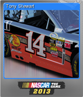 NASCAR the Game 2013 Foil 3