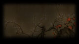 Total War SHOGUN 2 Background Cherry Blossoms