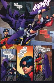 Robin 173 (04)