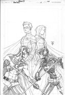 Red Robin 10 cover rough