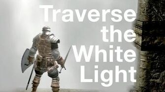 Traverse The White Light