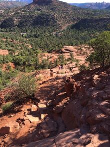 View from Cathedral Rock hike