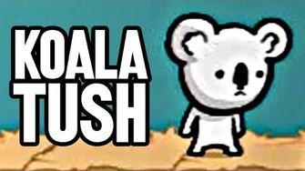 Koala Tush