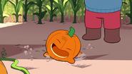 Gem Harvest 047