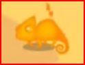 Orange Chameleon