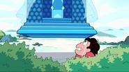 Steven's Dream 223