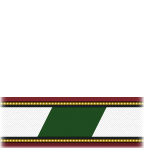 File:White Green Officer Sleeve (TWOK).png