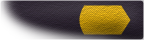 File:Yellow Petty Officer Sleeve (REM).png