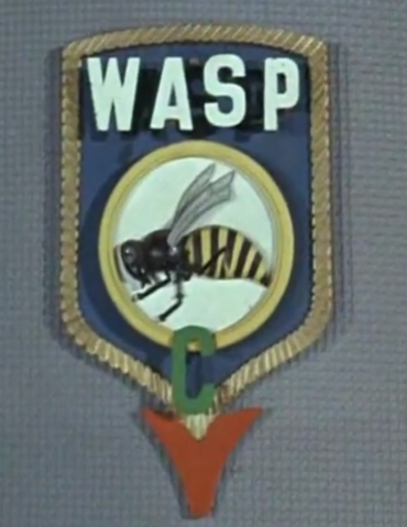File:WASP logo2.PNG