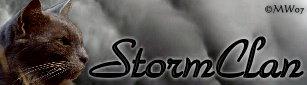 File:StormClan.jpg