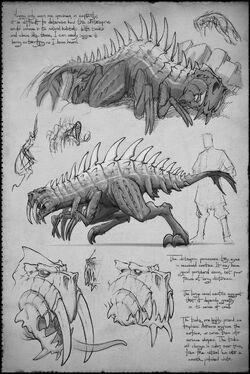 Sketchbook whitespine