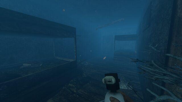 File:Shipwreck interior.jpg