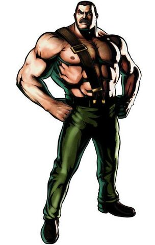 File:Mike Haggar.JPG