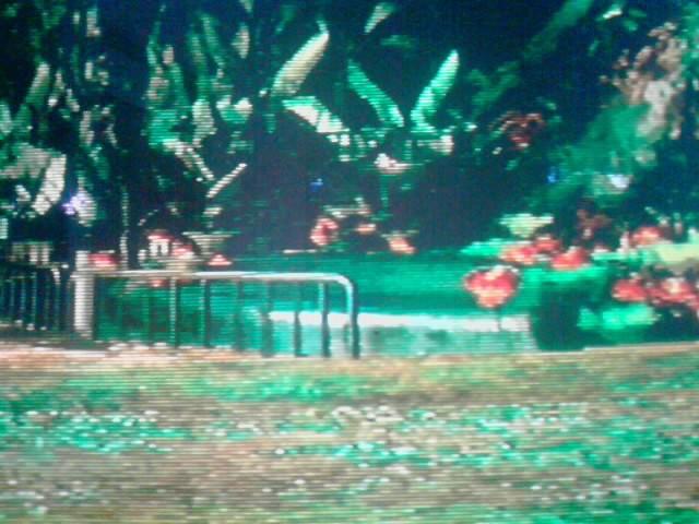 File:Green shower.jpg