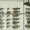 Weapons Thumbnail